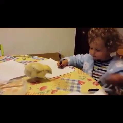niña estudiando con pollito