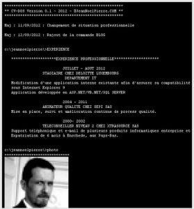 curriculum vitae original de programador